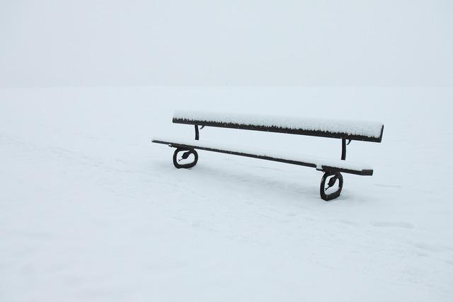 Abandoned alone bench, nature landscapes.