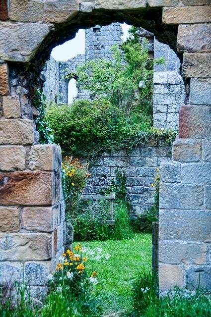 Abbey riveaux wall.