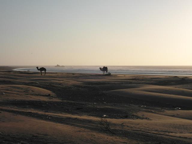 Abendstimmung desert beach, travel vacation.