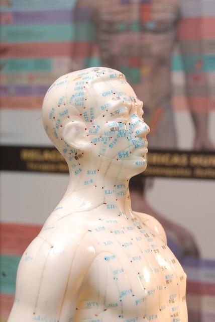 Acupuncture medicine alternative bioenergetics.