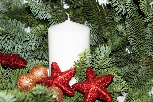 Advent poinsettia christmas, backgrounds textures.