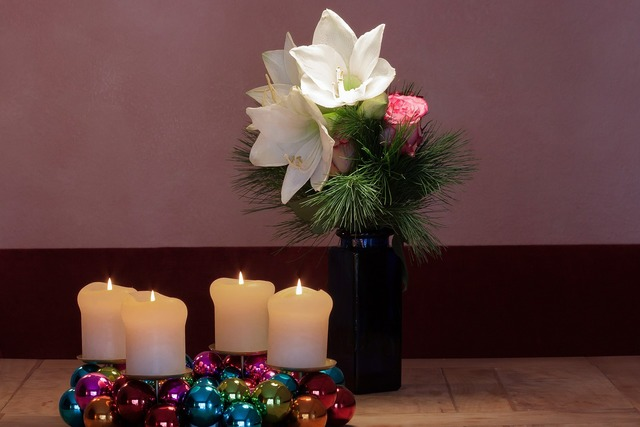 Advent wreath amaryllis white, nature landscapes.
