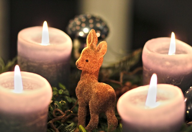 Advent wreath candles roe deer.