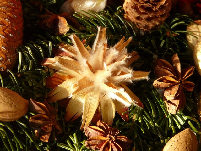 Advent wreath seeds ornament.