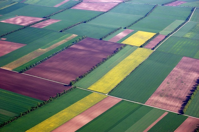 Aerial view fields color.