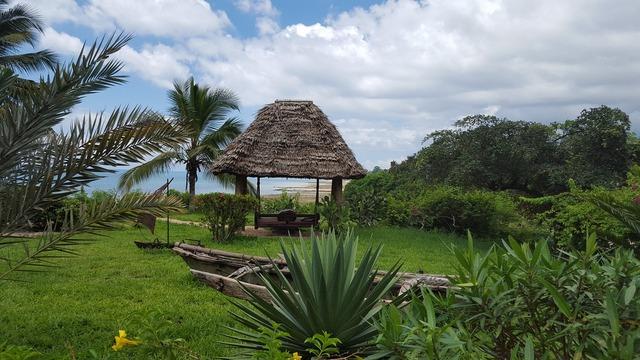 Africa zanzibar hakuna matata, travel vacation.