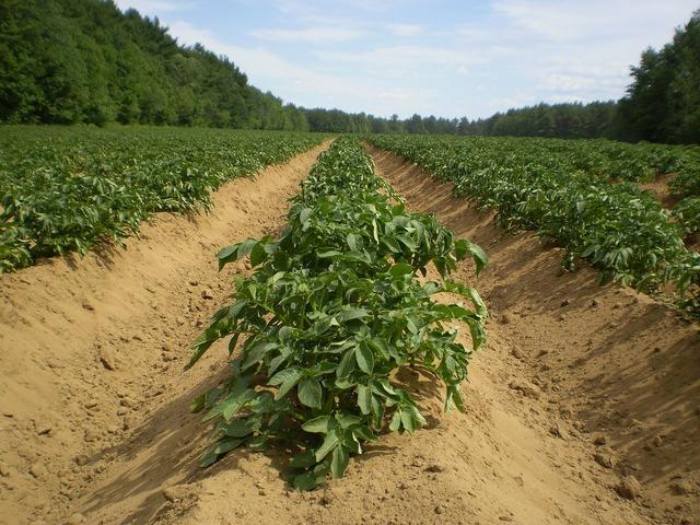 Agriculture farming fields, nature landscapes.