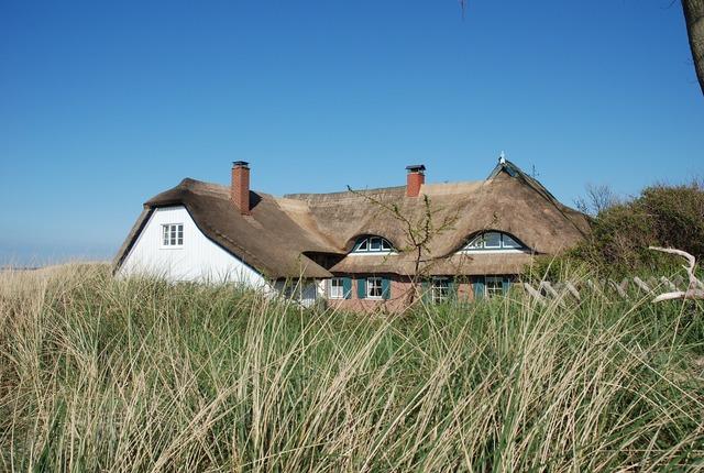 Ahrenshoop darss reed, architecture buildings.