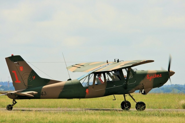 Aircraft fixed wing bosbok, travel vacation.