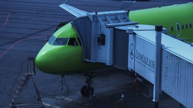 Airport domodedovo s7 airline.