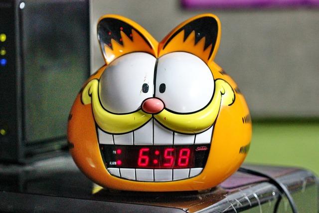 Alarm clock cat, animals.