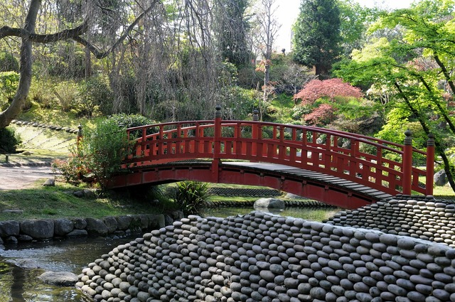 Albert kahn garden japanese garden boulogne-billancourt, nature landscapes.