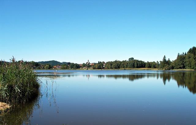 Allgäu foothills of the lake.