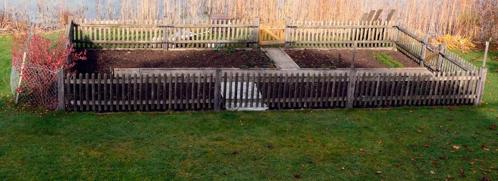 Allotment garden bed, nature landscapes.