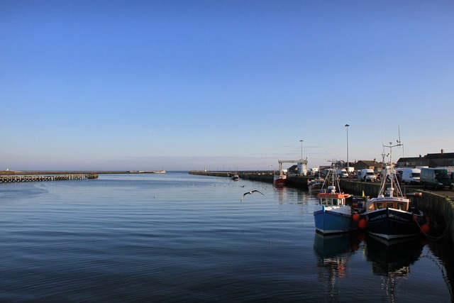 Amble northumberland harbour.