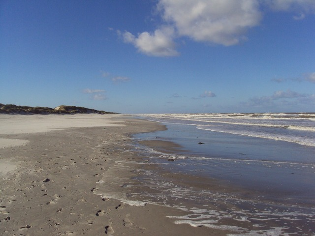 Ameland north sea beach, travel vacation.