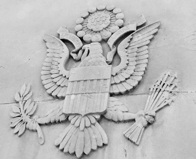 America american eagle.