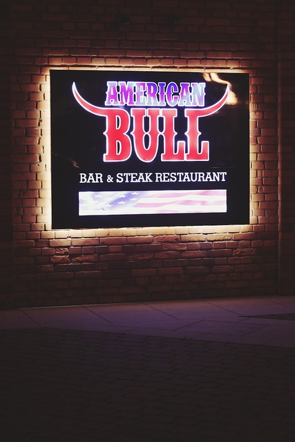 American bull bar.