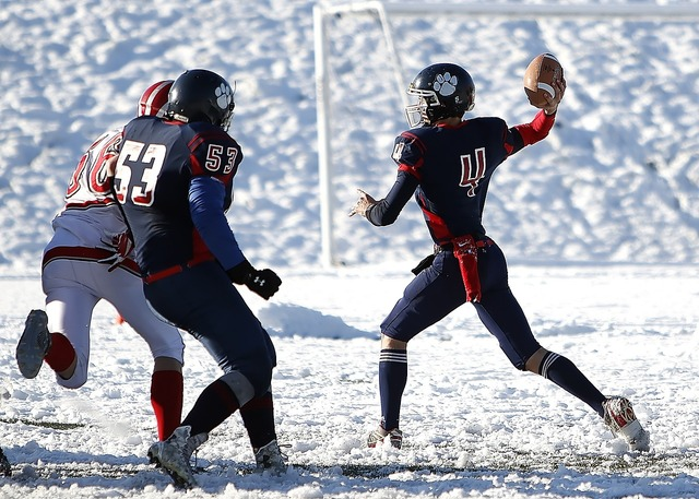 American football football quarterback, sports.