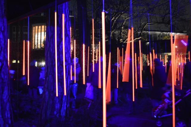 Amsterdam light festival art.