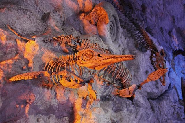 Ancient animal archeology, animals.
