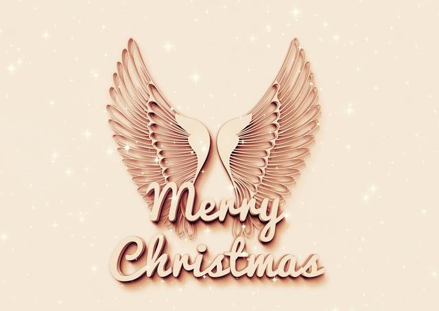 Angel wing christmas.