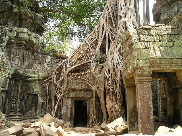 Angkor wat root cambodia, religion.