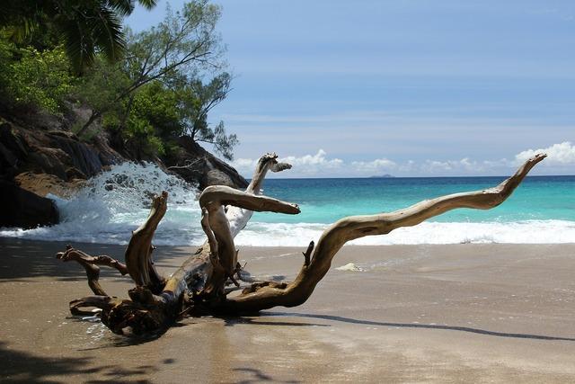 Anse major beach, travel vacation.
