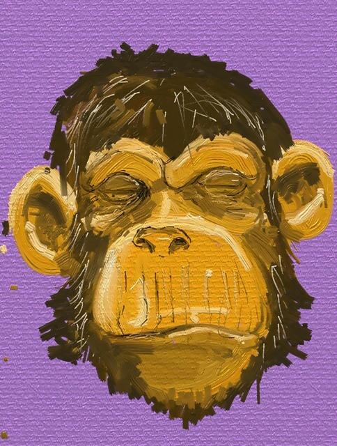 Ape monkey animal, animals.