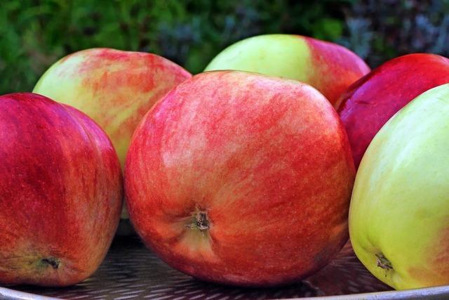 Apple grave steiner pome fruit, food drink.