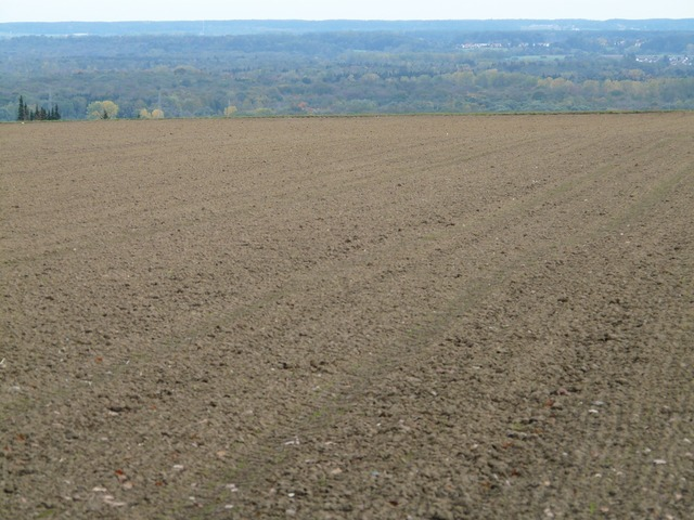 Arable land floor.