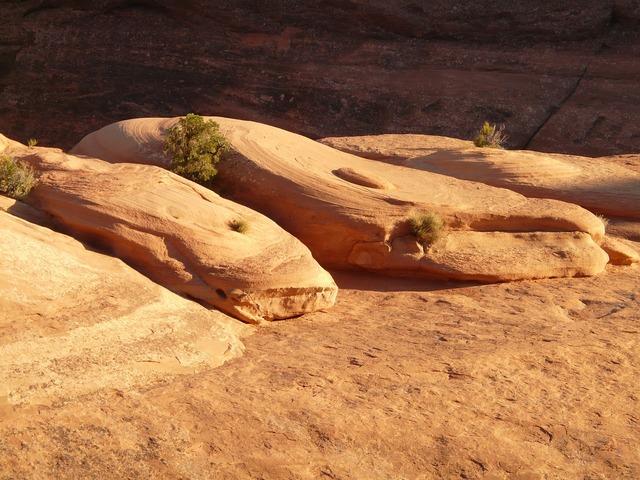 Arches national park usa utah.