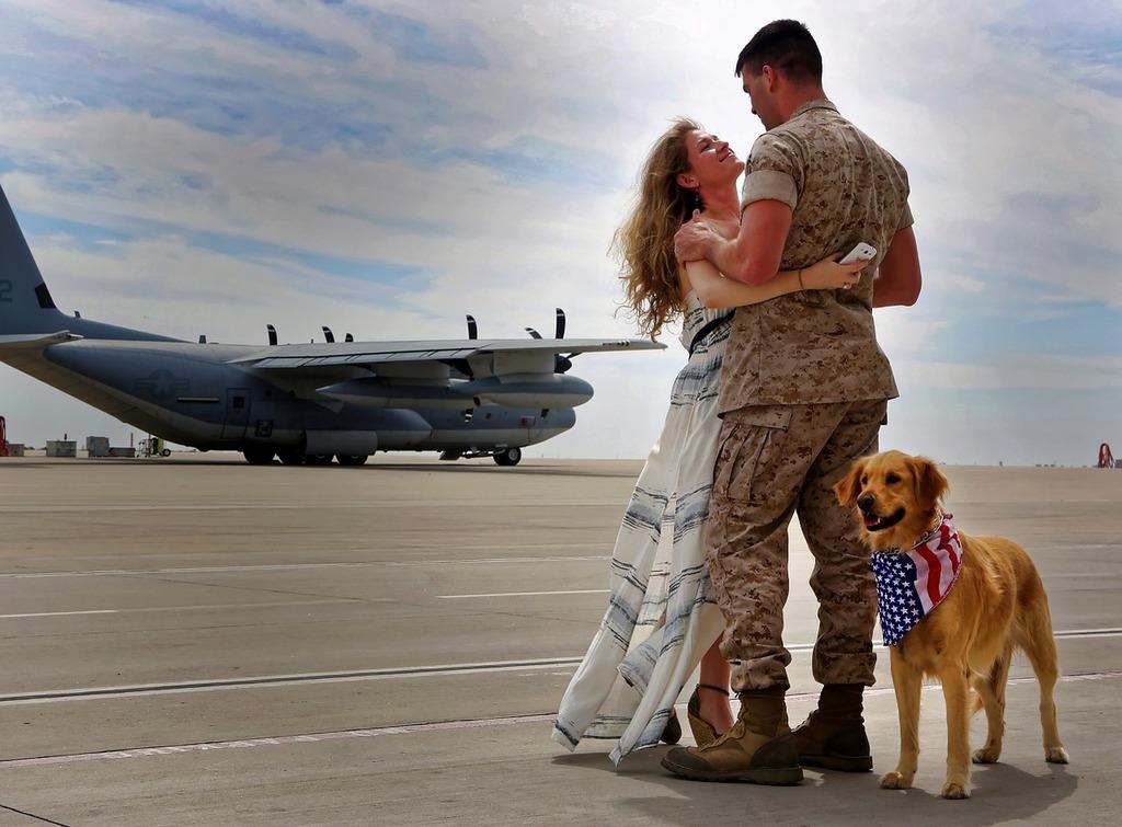Army homecoming aircraft, animals.