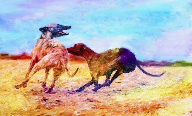 Art artist creative, backgrounds textures.