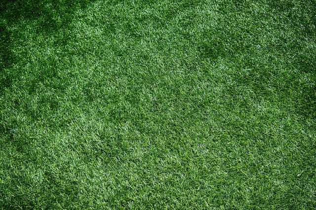 Artificial turf sports turf artificial grass, backgrounds textures.