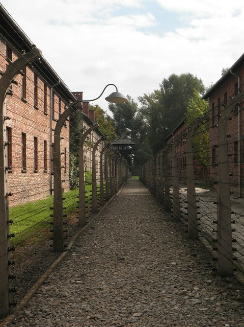 Auschwitz barbed wire separation.