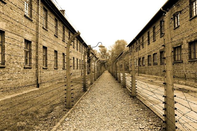 Auschwitz extermination camp alley, architecture buildings.