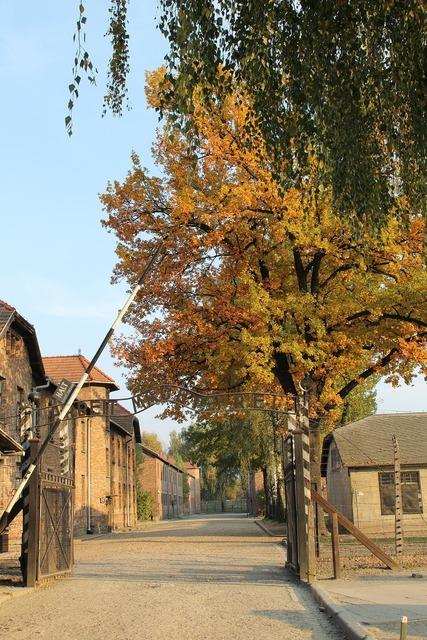 Auschwitz gateway alley, architecture buildings.