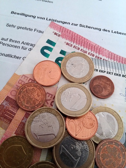 Authority germany rejected, business finance.