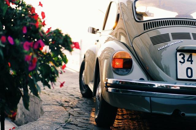 Automobile automotive beetle, transportation traffic.