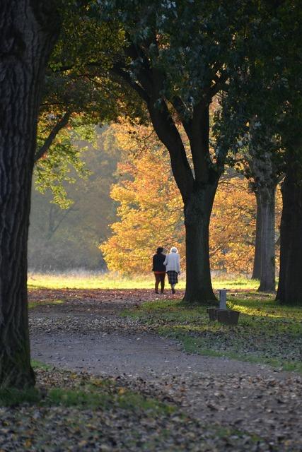 Autumn autumn forest golden autumn.