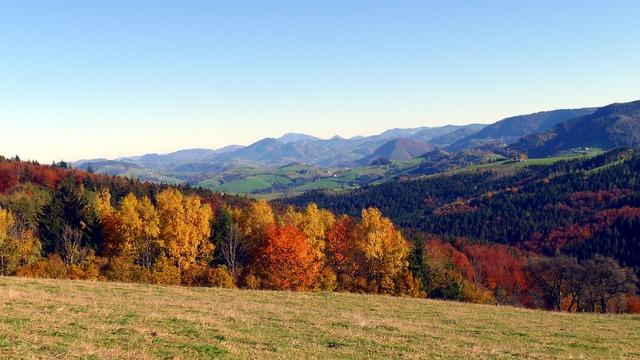 Autumn autumn mood autumn forest, nature landscapes.