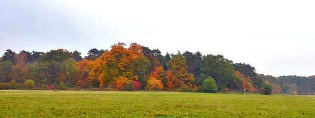 Autumn autumn panorama autumn mood, nature landscapes.