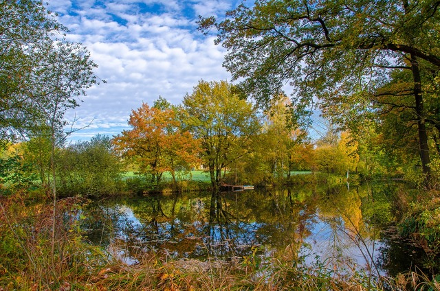 Autumn water lake, nature landscapes.