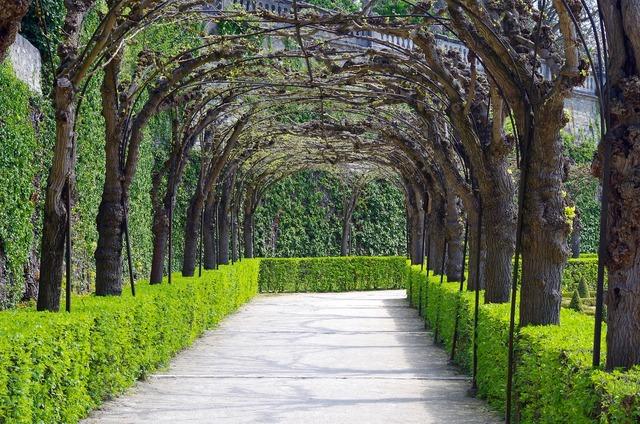Avenue garden trees.