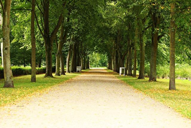 Avenue park ludwigslust-parchim.