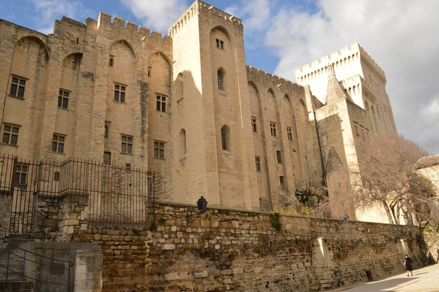 Avignon france castle, architecture buildings.
