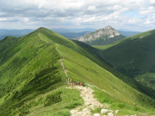 Back of the ridge hiking trail.