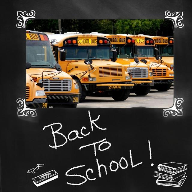 Back to school school bus bus, education.