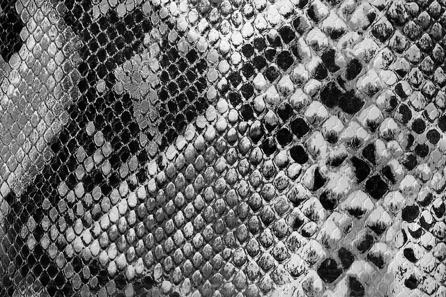 Backdrop black close-up, backgrounds textures.